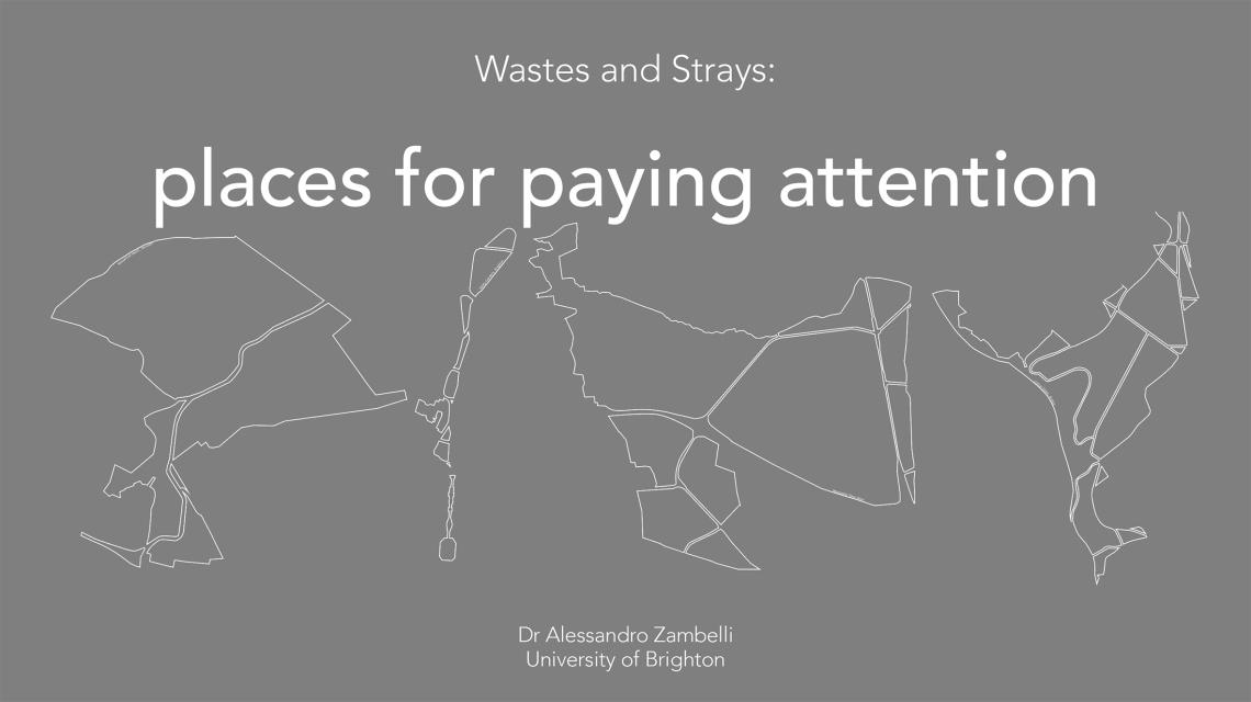Zambelli_Wastes and Strays_Pavia